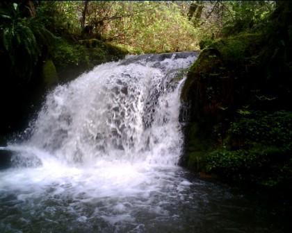 hodges cr upper falls 2